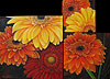 Gerber Daisies painted by Wendy Palmer.<br>