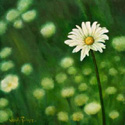 Daisy painted by Wendy Palmer.<br>